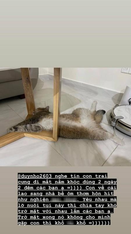 Linh Ngoc Dam lo ly do khong tro mat voi nguoi yeu cu-Hinh-2