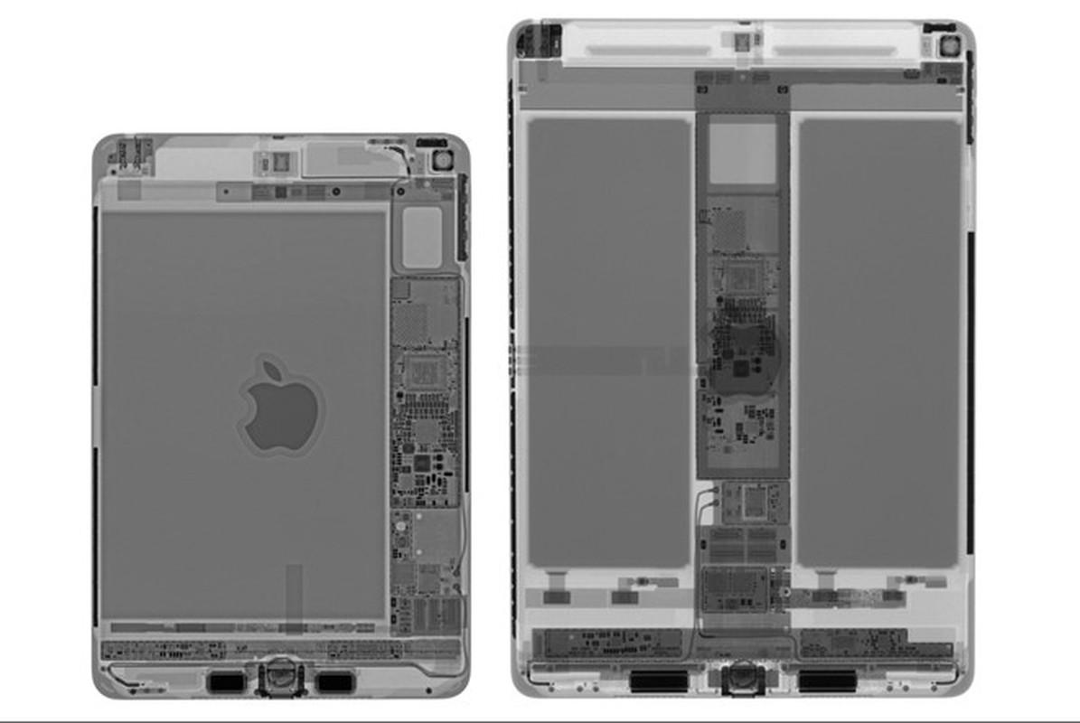 Mo iPad mini 2019 - lai tap du yeu to tu cac dong iPad khac nhau-Hinh-3