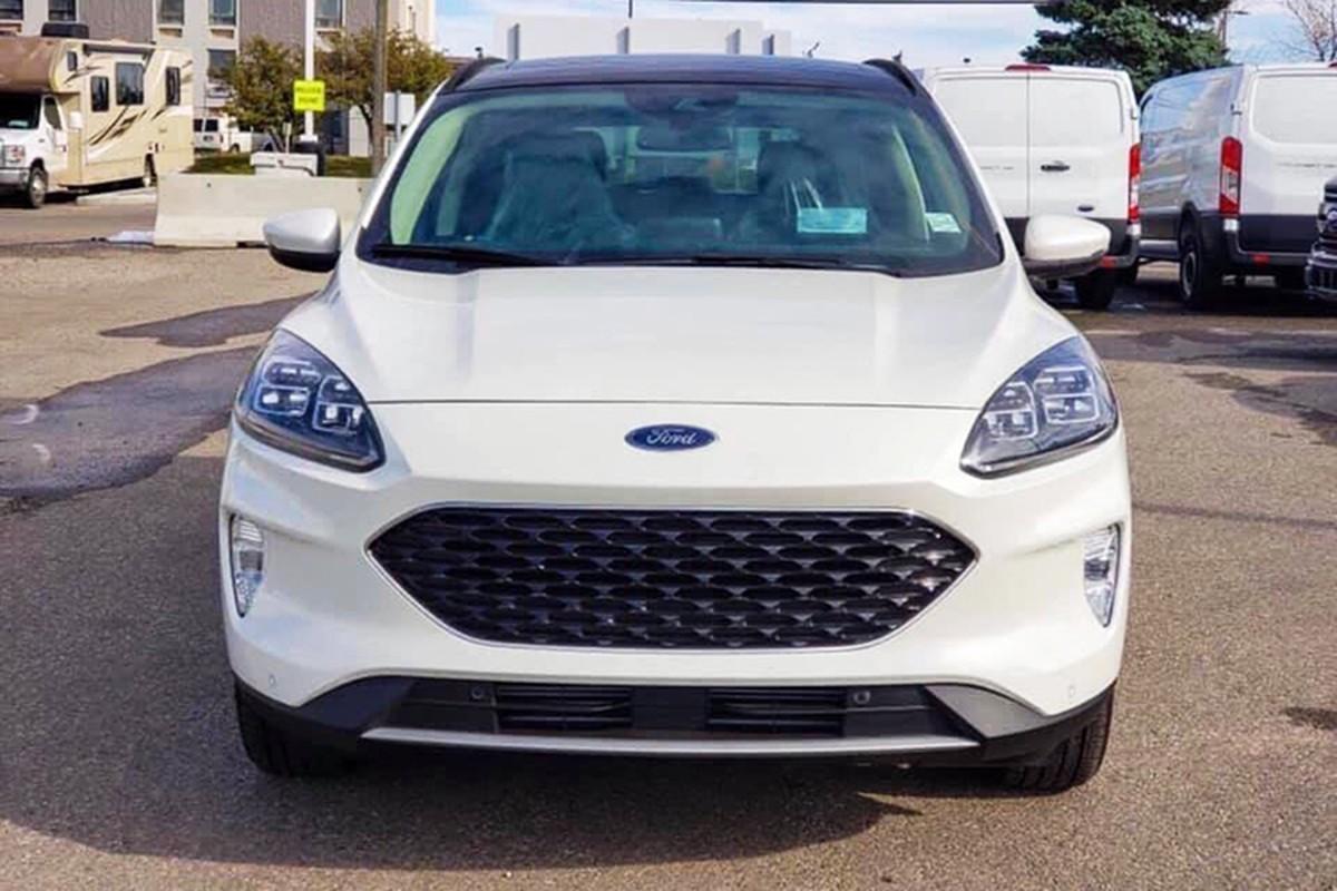 Ford Escape 2020 moi gan 1 ty dong tai Viet Nam?-Hinh-3
