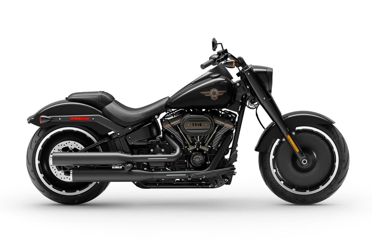 Harley-Davidson Fat Boy ky niem 30 nam hon 500 trieu dong tai My-Hinh-2
