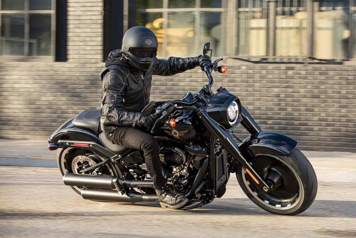 Harley-Davidson Fat Boy ky niem 30 nam hon 500 trieu dong tai My-Hinh-6