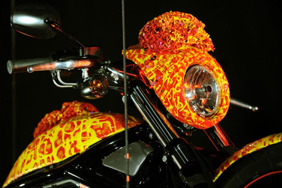 Chao ban Harley-Davidson toi 697 ty dong, gap 90 lan Rolls-Royce-Hinh-4
