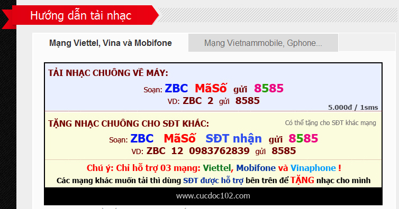Nhung trao luu cong nghe vang bong mot thoi o Viet Nam-Hinh-7