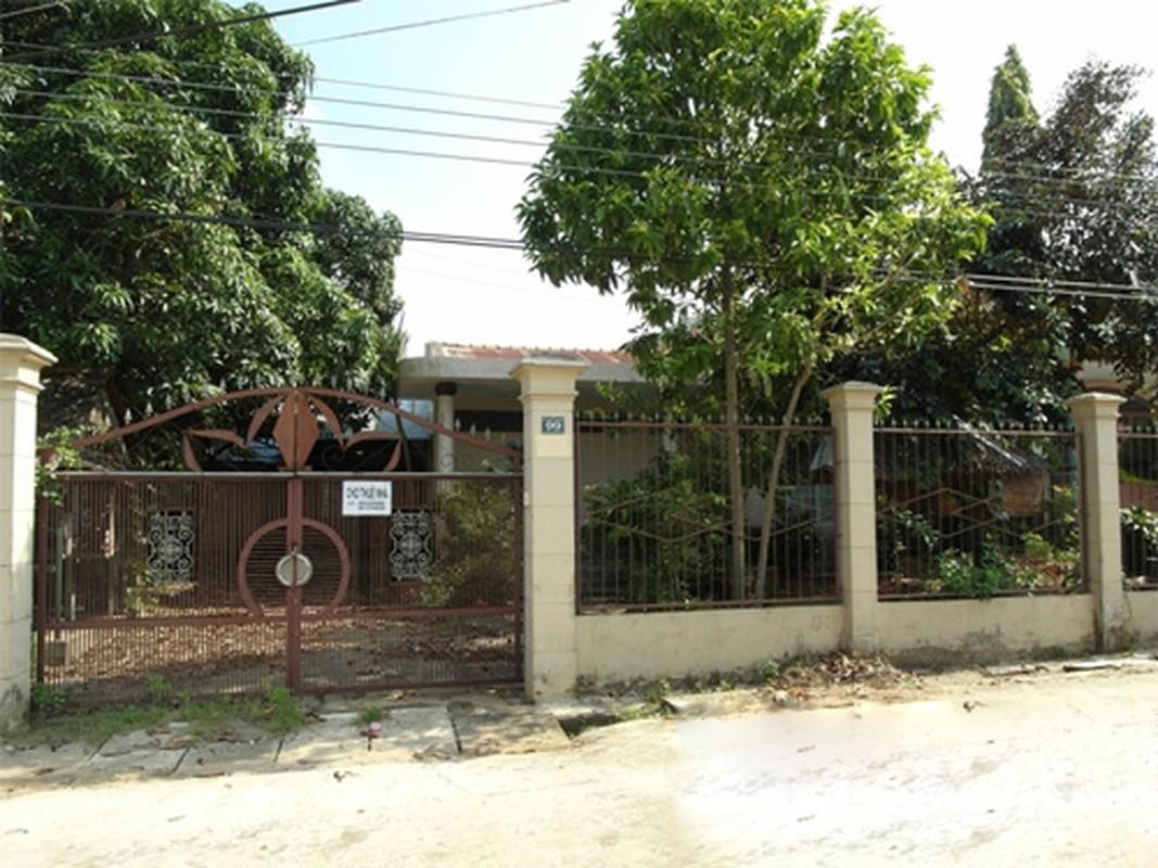 Biet thu bo hoang cua A hau Hoang My o Dong Nai-Hinh-11