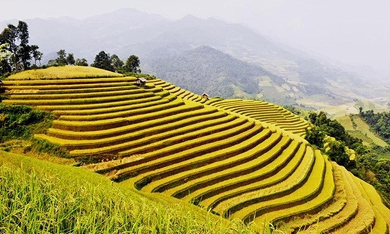 Nhung tour du lich gia mem hut khach dip 2/9-Hinh-3