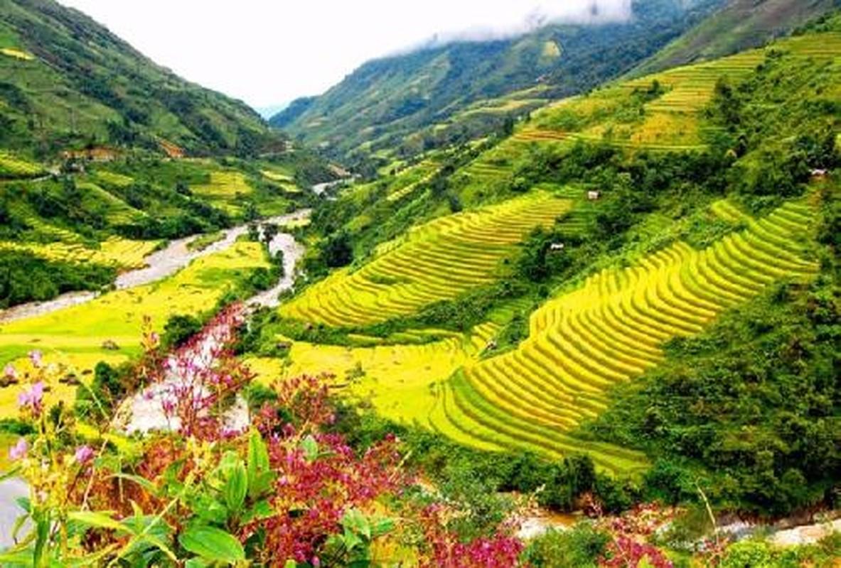 Nhung tour du lich gia mem hut khach dip 2/9-Hinh-5