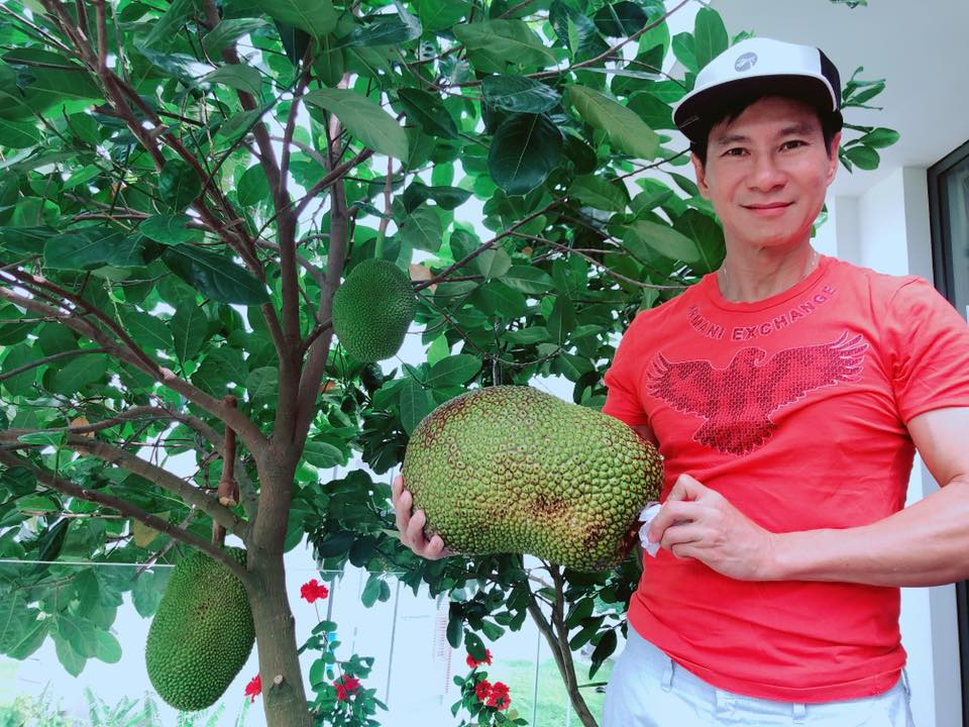 Nhung vuon rau xanh muot trong nha sao Viet o Sai Gon-Hinh-10