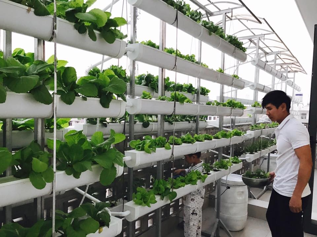 Nhung vuon rau xanh muot trong nha sao Viet o Sai Gon-Hinh-8