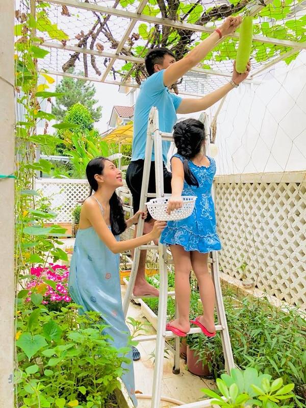 Nhung vuon rau xanh muot trong nha sao Viet o Sai Gon
