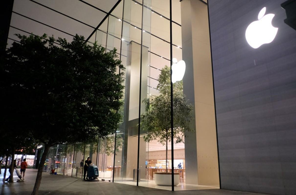 Nguoi Viet chen nhau xep hang o Singapore cho mua iPhone XS-Hinh-6