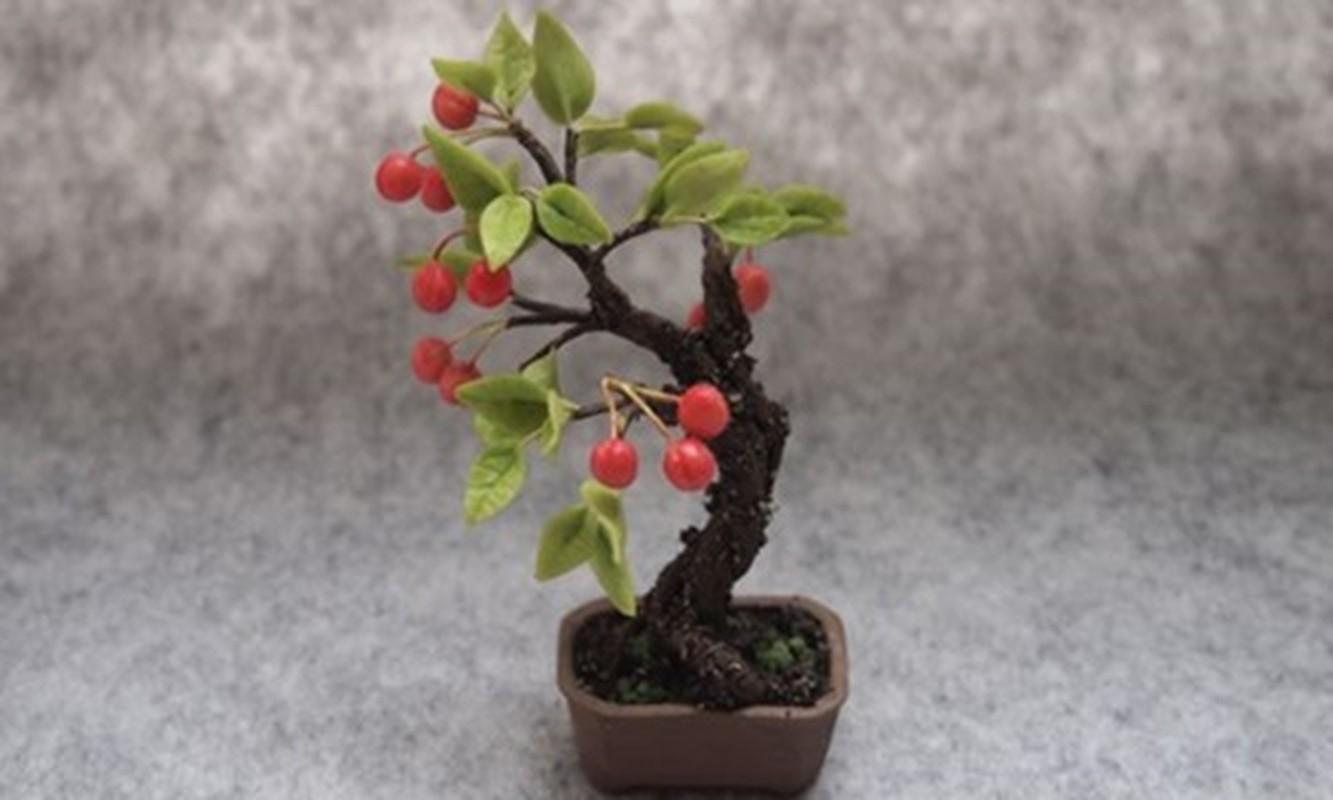 Me tit nhung chau bonsai cherry dep hut mat-Hinh-9