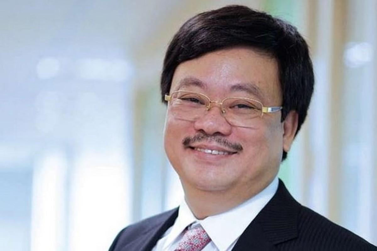 Dai gia Viet nao duoc vinh danh la ty phu USD nam 2019?-Hinh-13