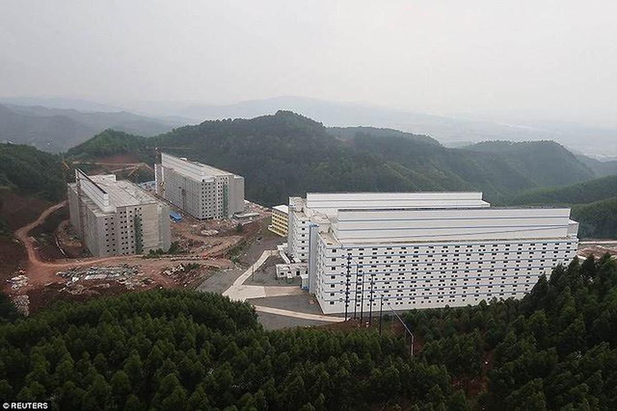 La ky resort, cao oc 7 tang sang chanh danh cho...heo-Hinh-8