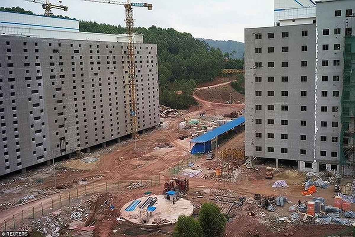 La ky resort, cao oc 7 tang sang chanh danh cho...heo-Hinh-9