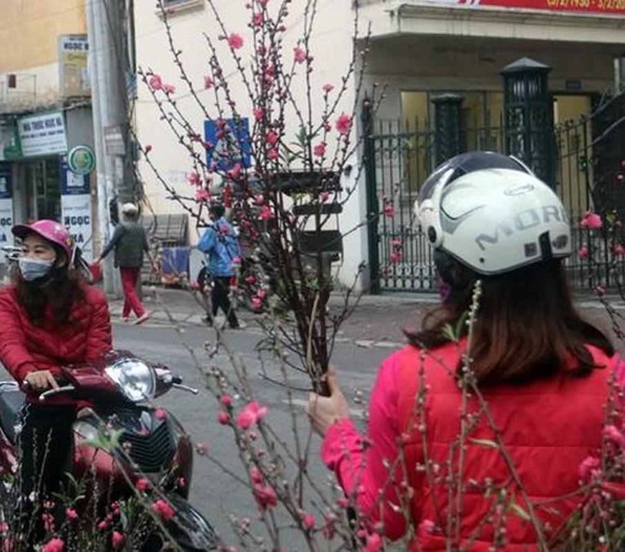 Thu choi hoa dat do cua nha giau Viet sau Tet Nguyen dan-Hinh-10