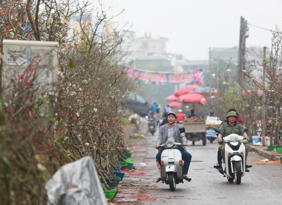 Thu choi hoa dat do cua nha giau Viet sau Tet Nguyen dan-Hinh-3