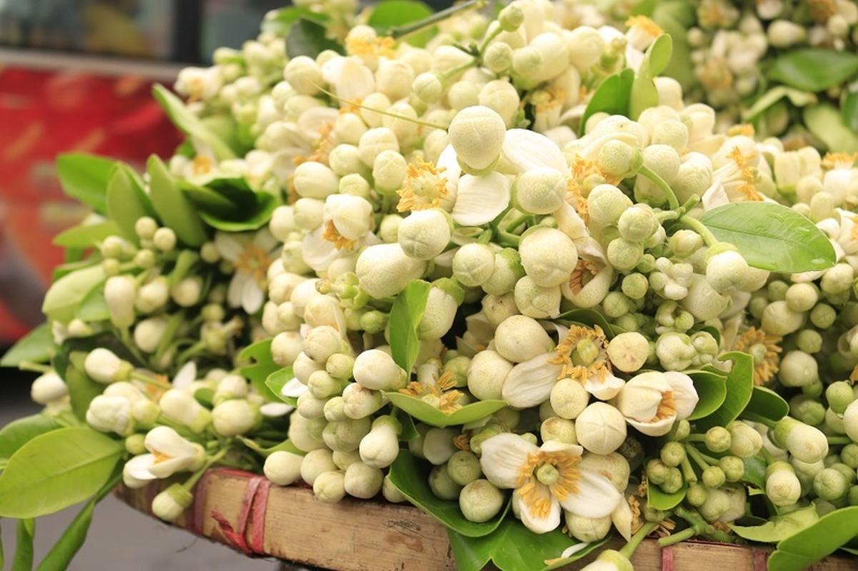 Thu choi hoa dat do cua nha giau Viet sau Tet Nguyen dan-Hinh-5