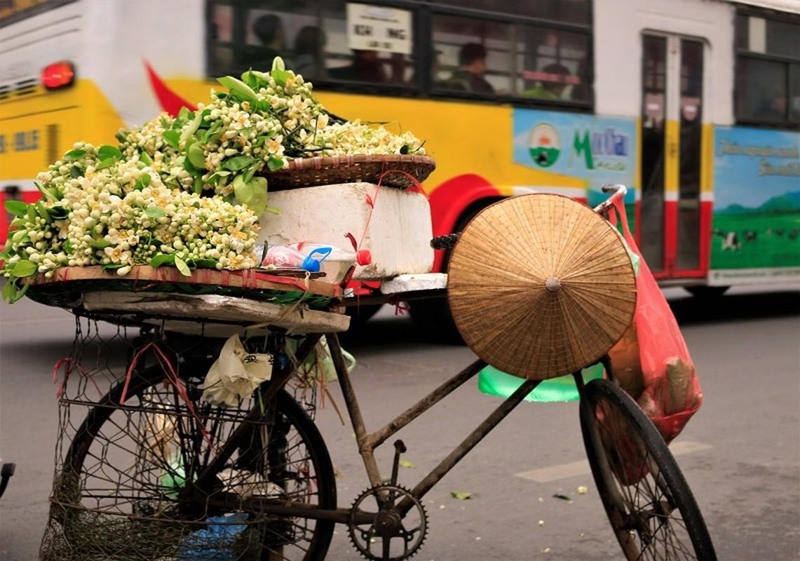Thu choi hoa dat do cua nha giau Viet sau Tet Nguyen dan-Hinh-6