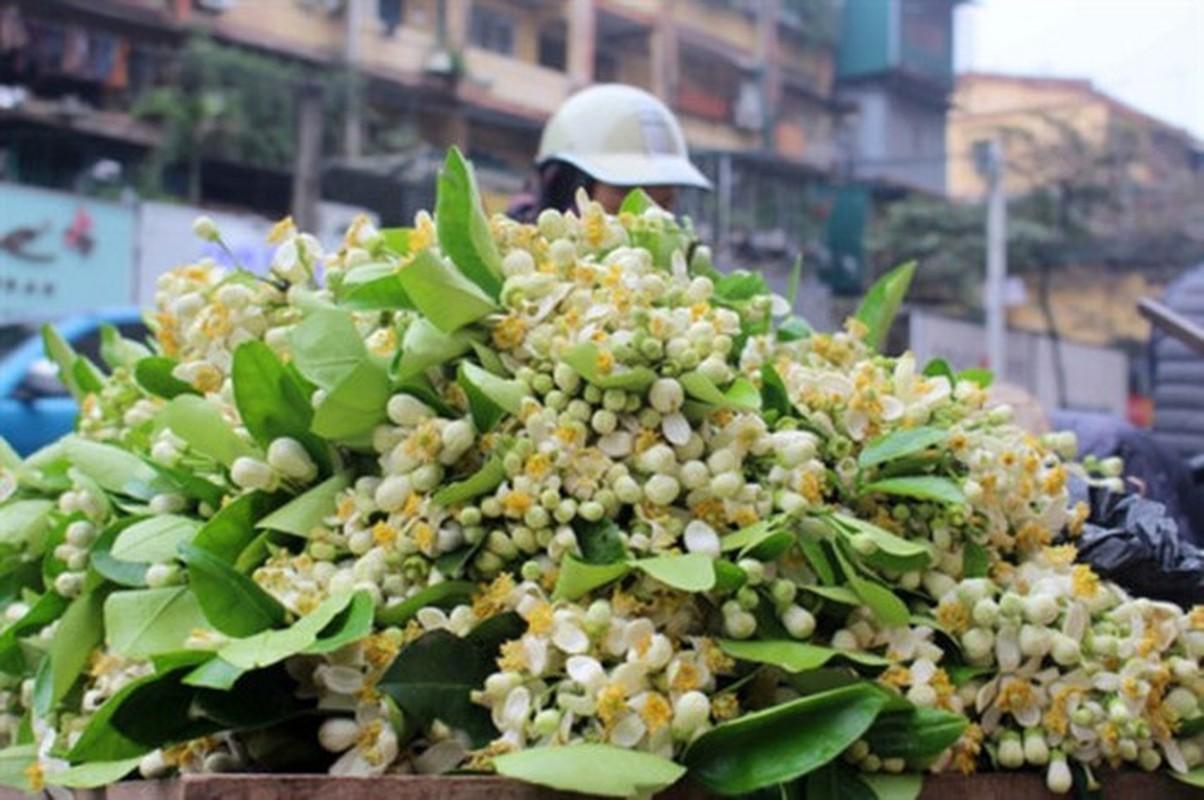 Thu choi hoa dat do cua nha giau Viet sau Tet Nguyen dan-Hinh-7