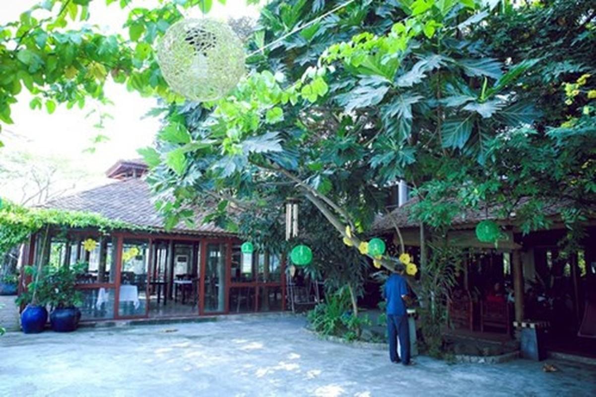 Biet thu vuon sieu dep cua A hau Duong Truong Thien Ly-Hinh-4