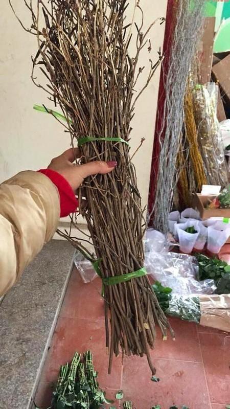 Hoa do quyen ngu dong tai xuat, ban tran lan tren mang-Hinh-9