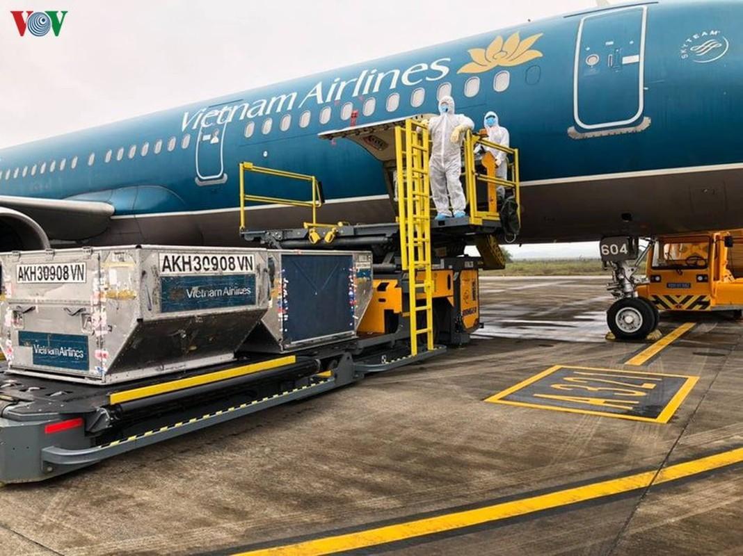 Vietnam Airlines, Bamboo Airways thuc hien bao nhieu chuyen bay dua cong dan ve nuoc?-Hinh-2