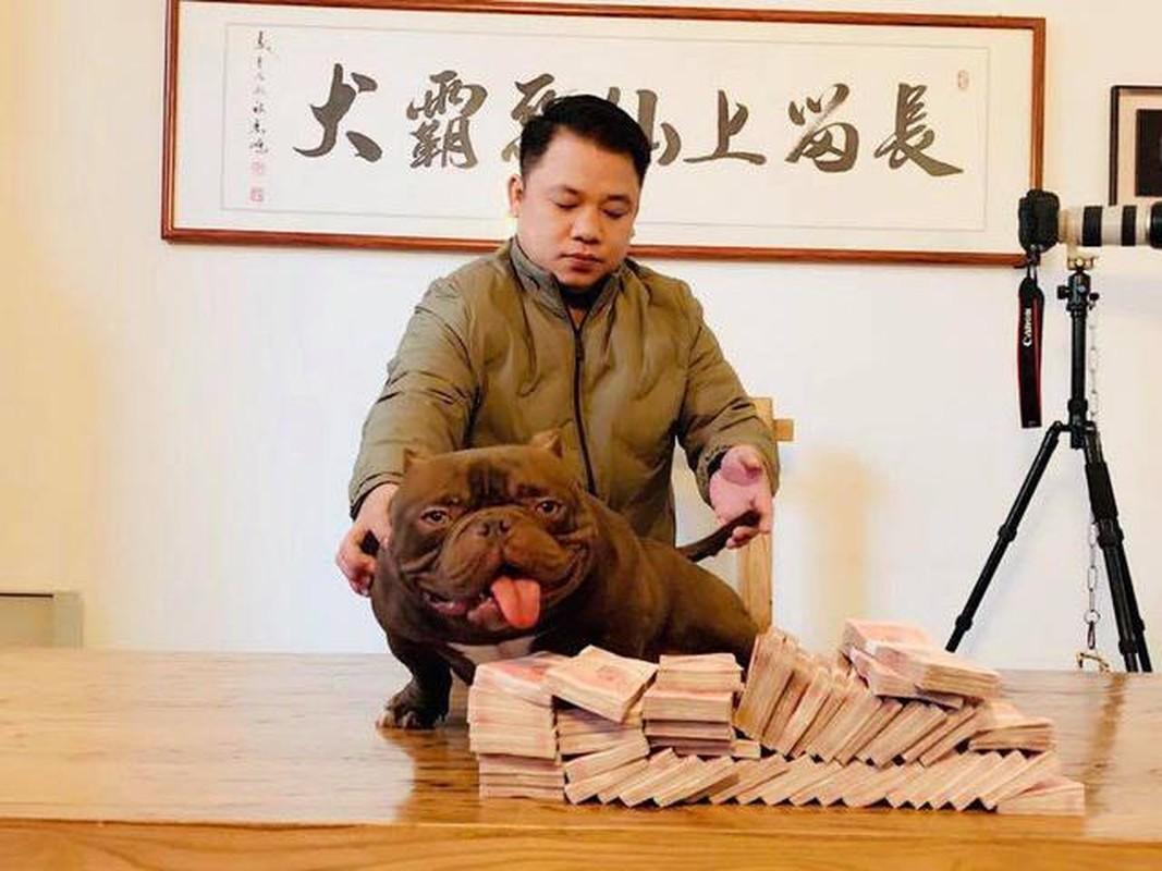 "Dai gia Viet choi lon, chi ca ty dong choi cho ""khung""-Hinh-2"