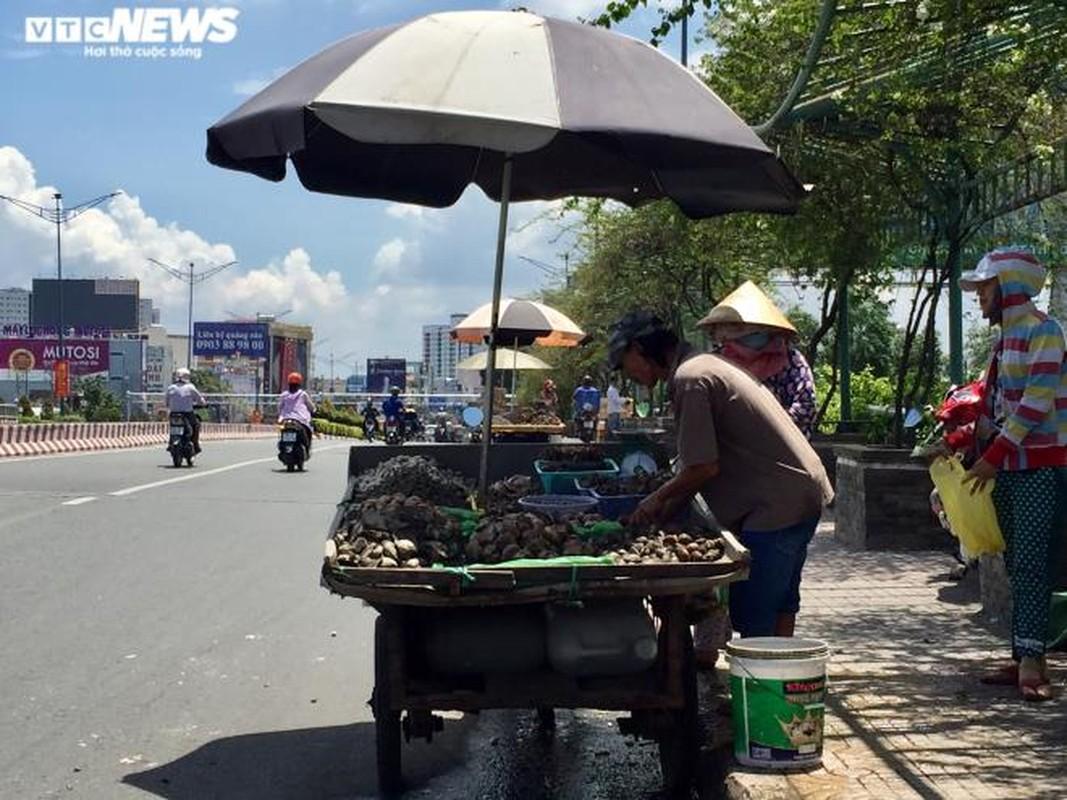Diem danh nhung hai san sieu re dang hut khach Viet-Hinh-7