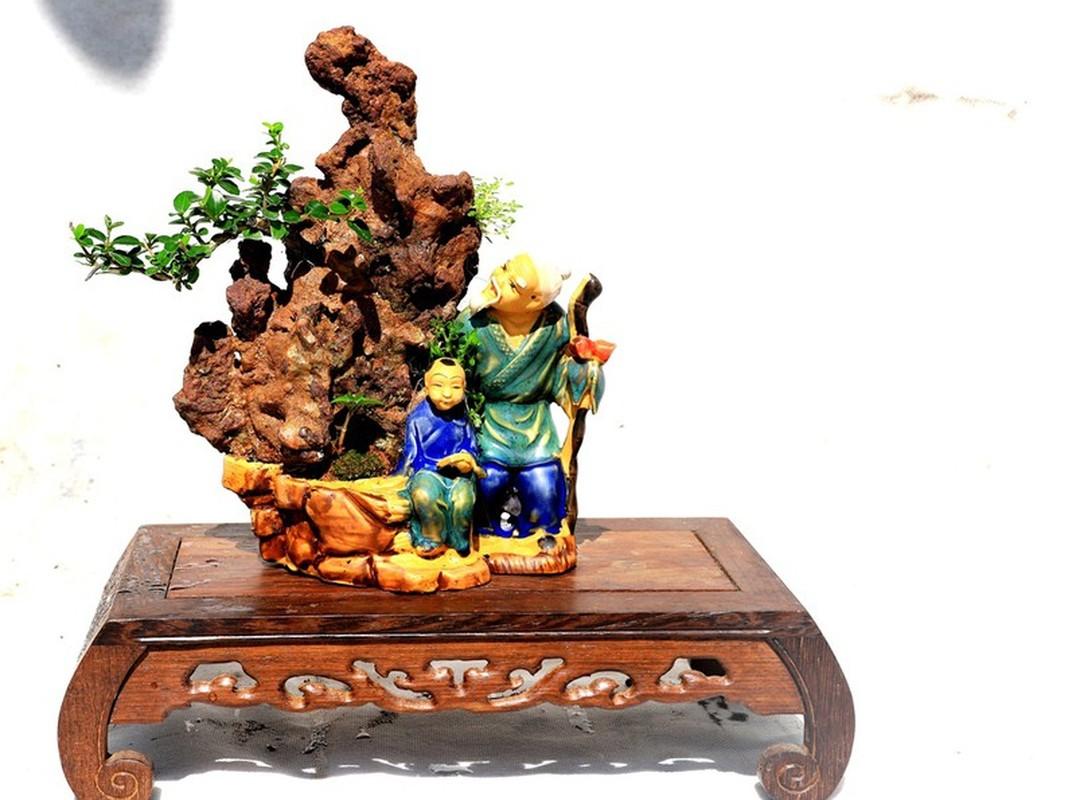 Man nhan bo suu tap bonsai mini ky luc the gioi cua lao nong Khanh Hoa-Hinh-8