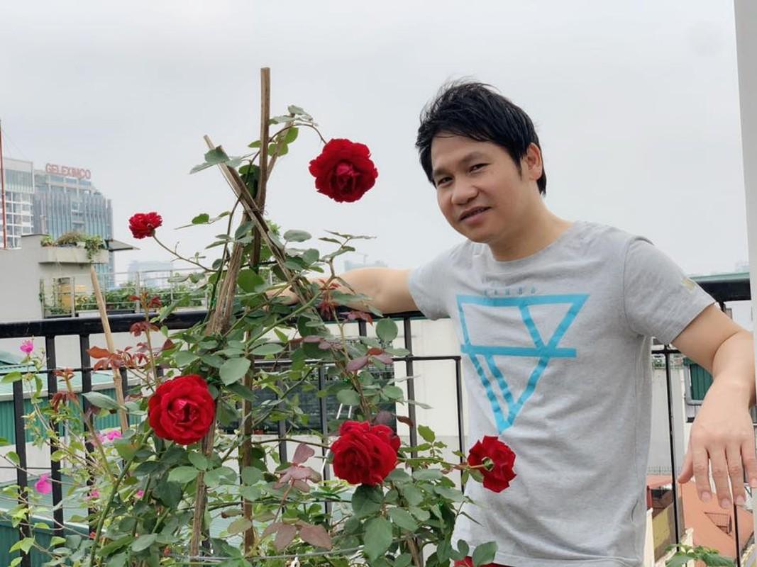 Muot mat vuon rau sach tren san thuong nha ca si Trong Tan-Hinh-8