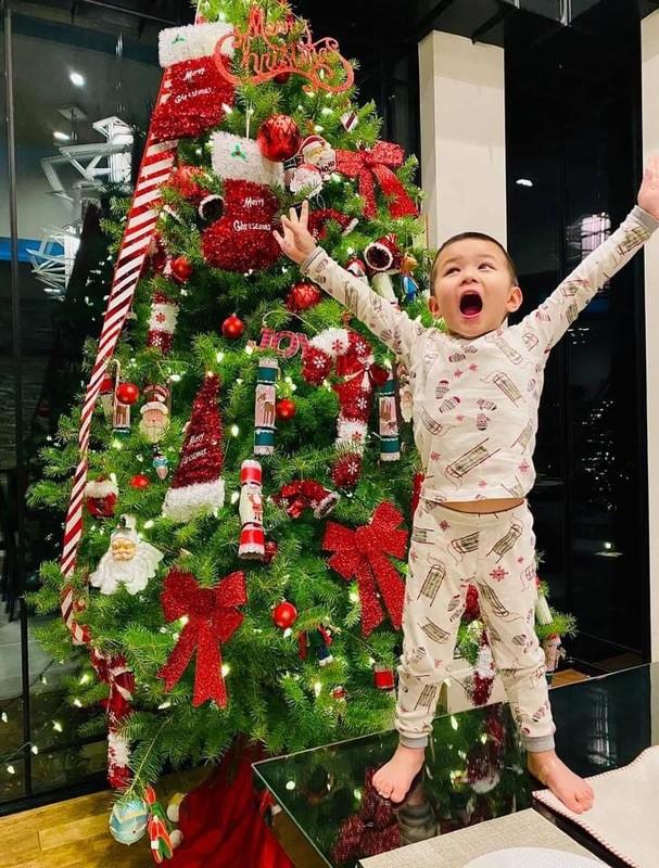 Man nhan xem nha sao Viet trang tri Noel ngap sac mau-Hinh-7