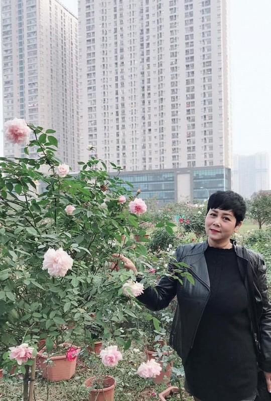Khu vuon ruc ro sac hoa cua NSND Minh Hang-Hinh-4