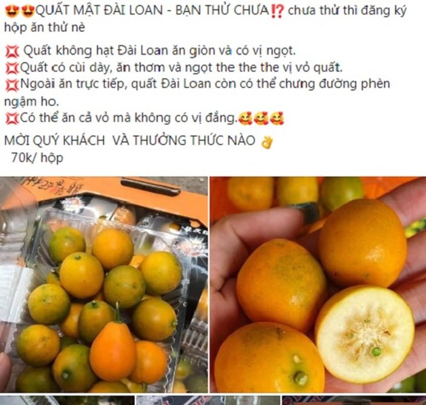 Quat ngot khong nuoc, dac ruot hut khach dip Tet Nguyen dan-Hinh-2