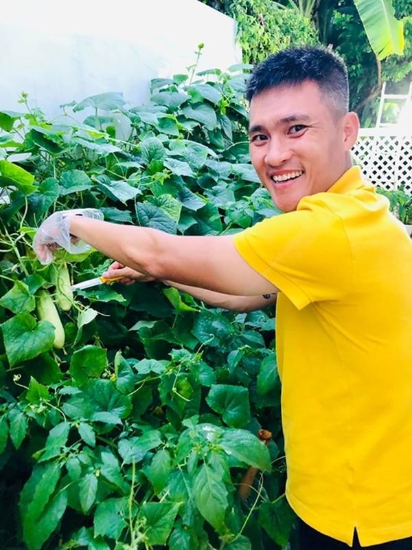 Ngam vuon rau xanh tot trong nha sao Viet-Hinh-13
