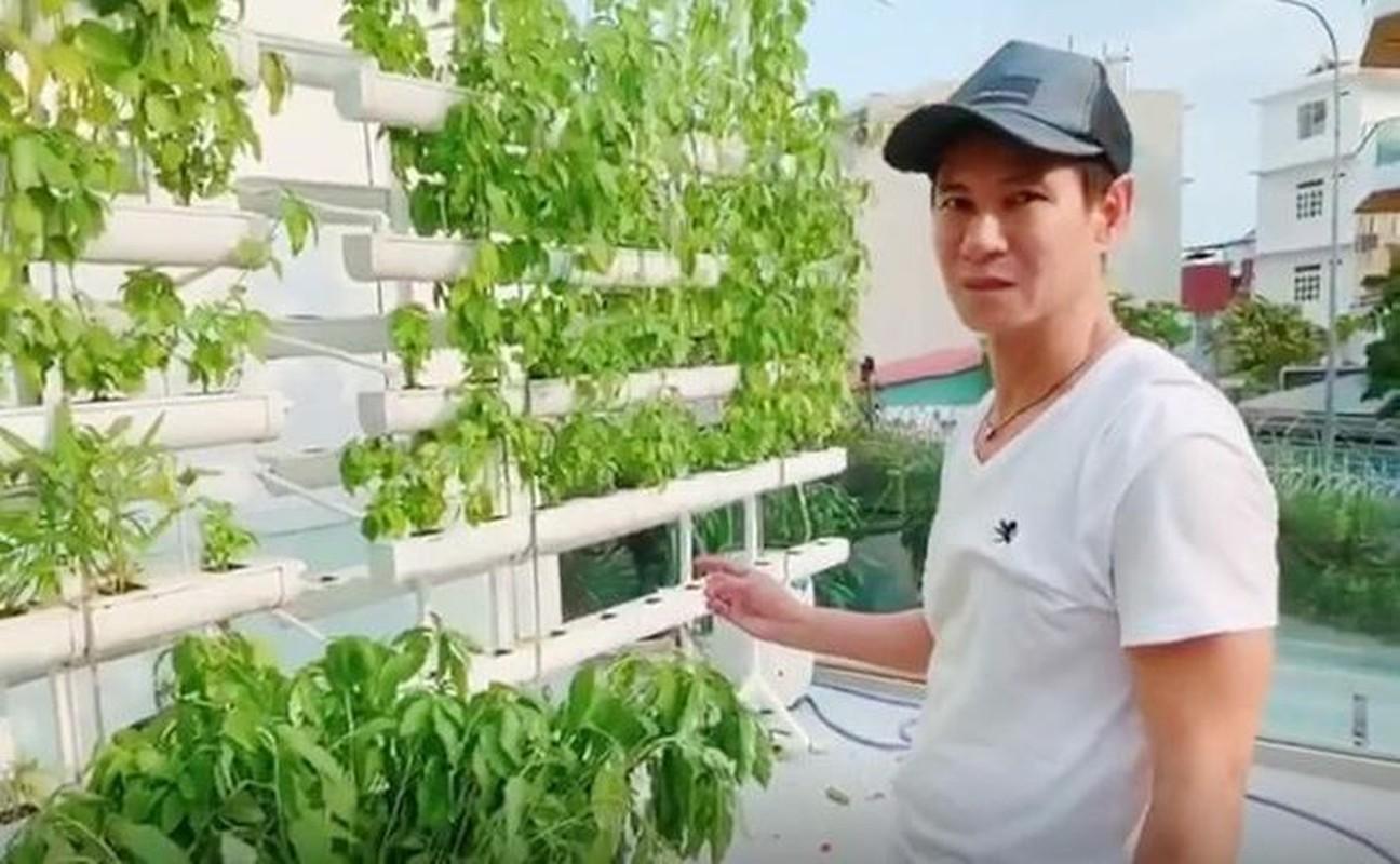 Ngam vuon rau xanh tot trong nha sao Viet-Hinh-3