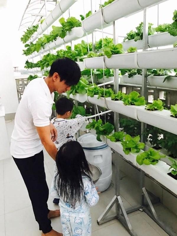 Ngam vuon rau xanh tot trong nha sao Viet