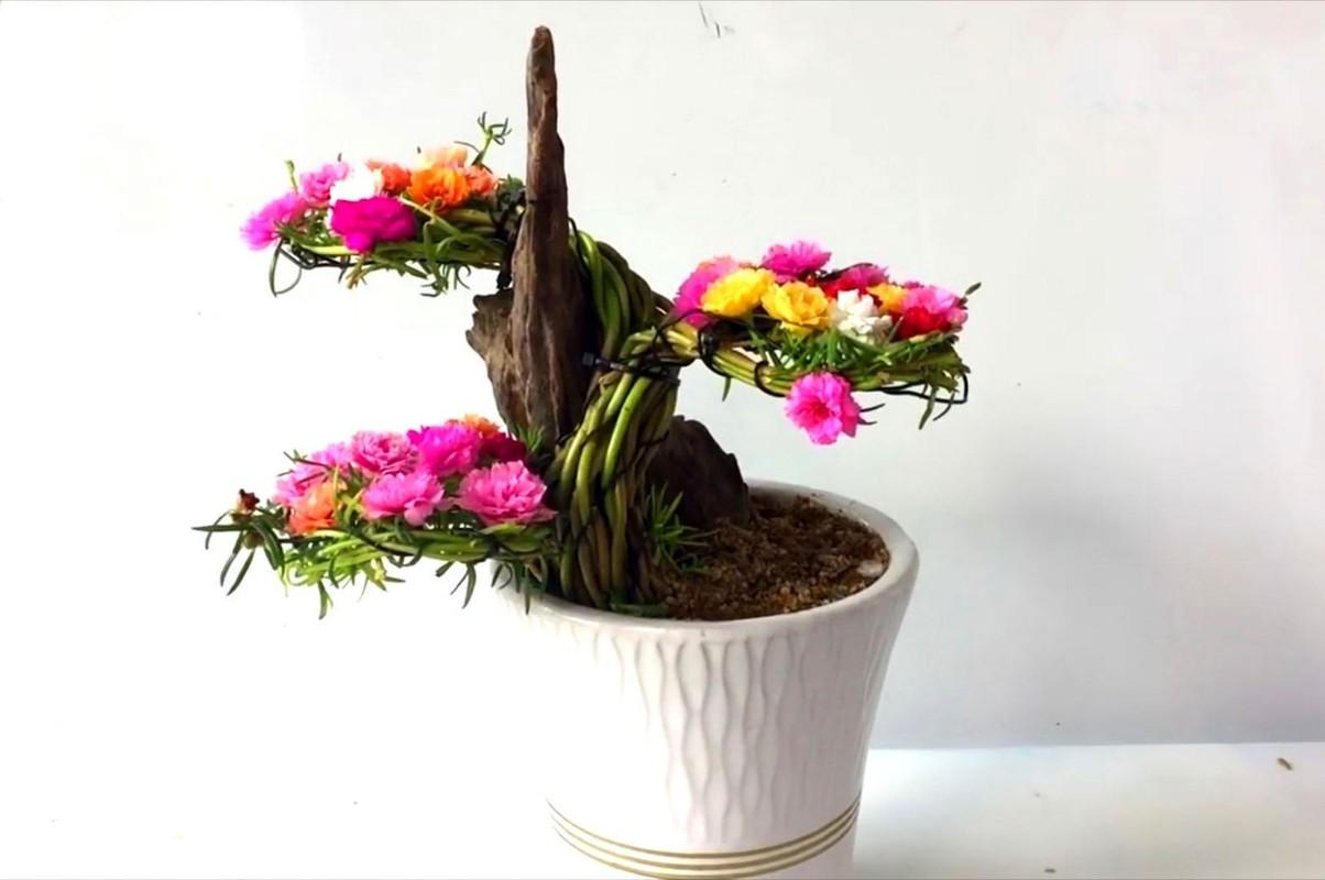Ngo ngang loat cay dai thanh bonsai choi Tet-Hinh-8