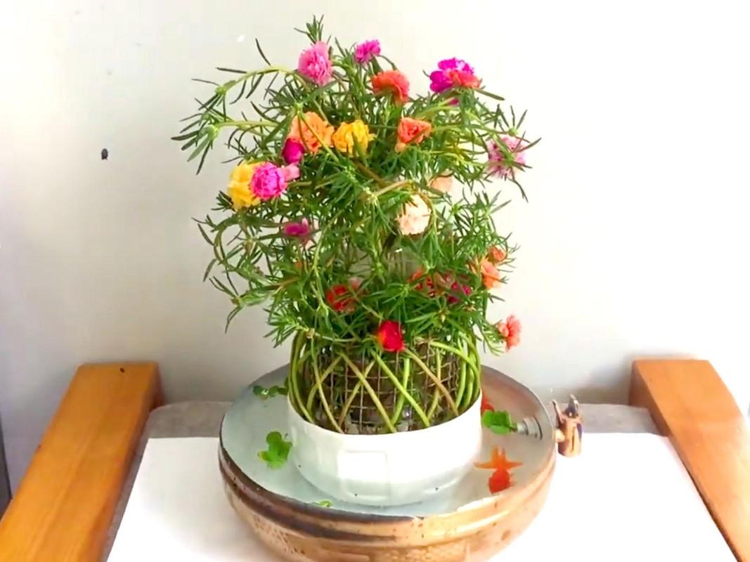 Ngo ngang loat cay dai thanh bonsai choi Tet-Hinh-9