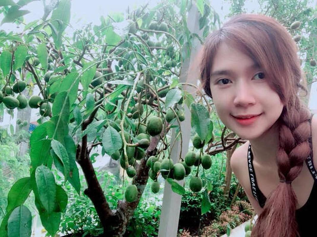 Nha vuon xanh muot o ngoai o Sai Gon cua Ly Hai - Minh Ha-Hinh-9