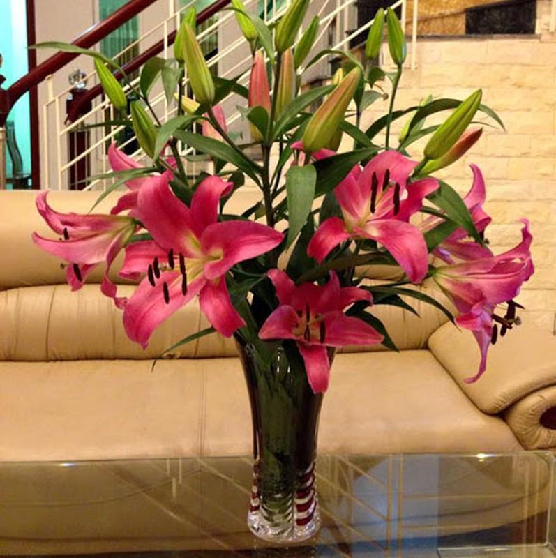 Y nghia 10 loai hoa dep chung trong nha vao ngay Tet-Hinh-3