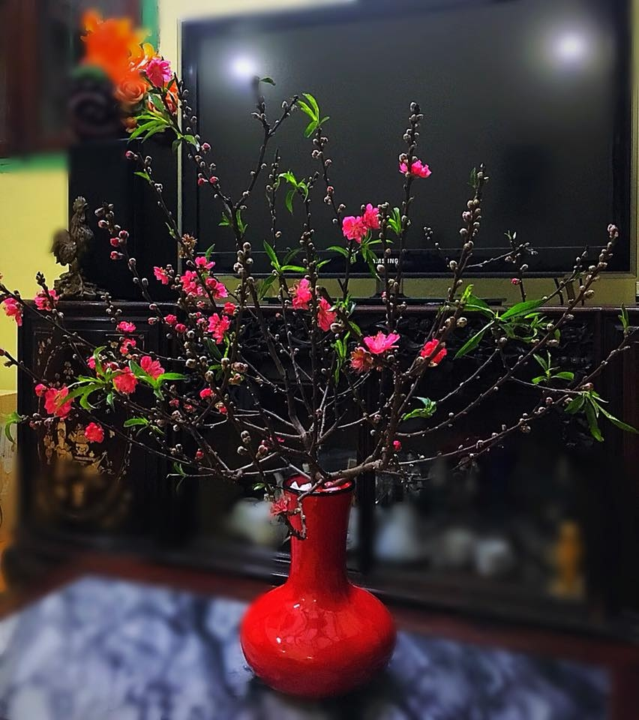 Y nghia 10 loai hoa dep chung trong nha vao ngay Tet