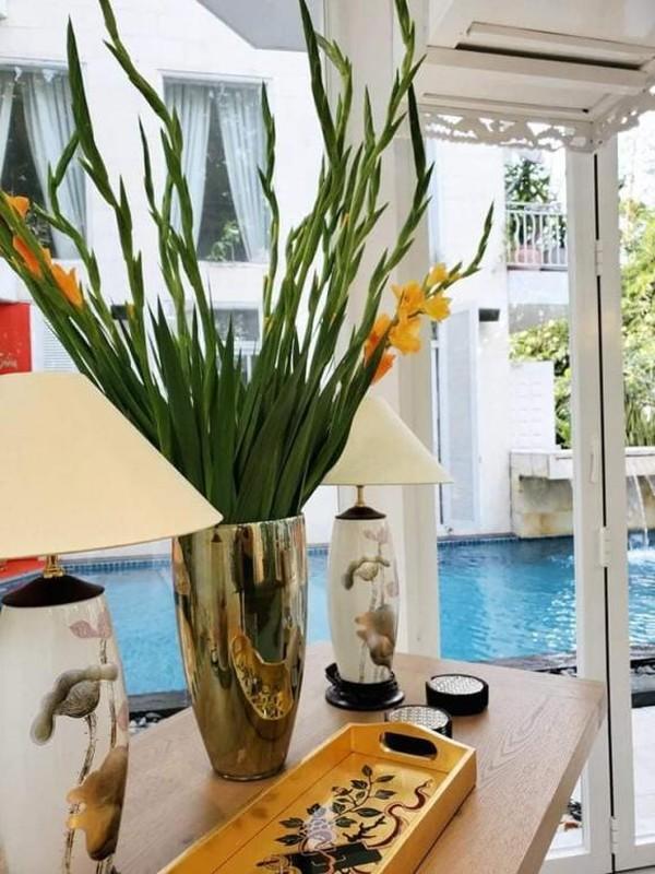 He lo nha rieng dep nhu resort cua Shark Khoa-Hinh-7
