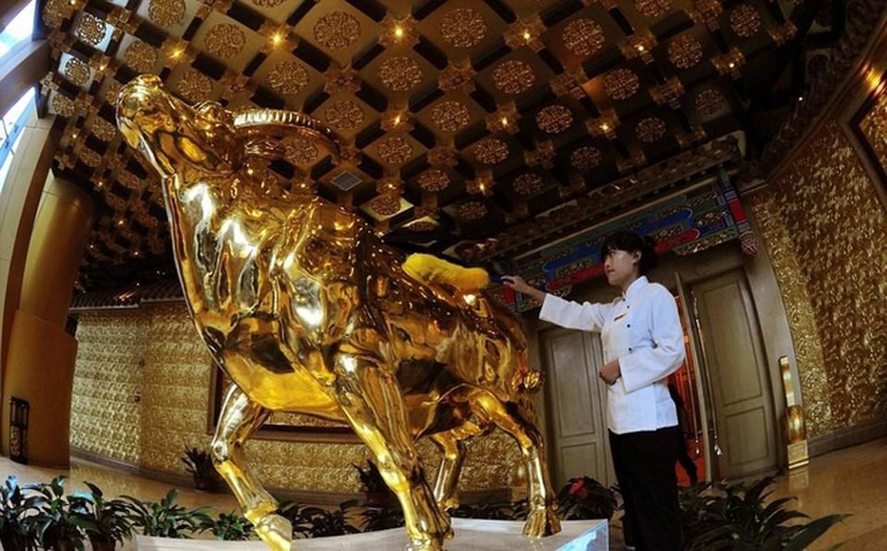 Bi an trong ngoi lang giau co nhat Trung Quoc-Hinh-11