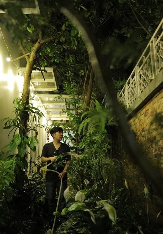 Khoi tai san cuc khung cua ca si Quang Ha, dat nhat la thu nay!-Hinh-5