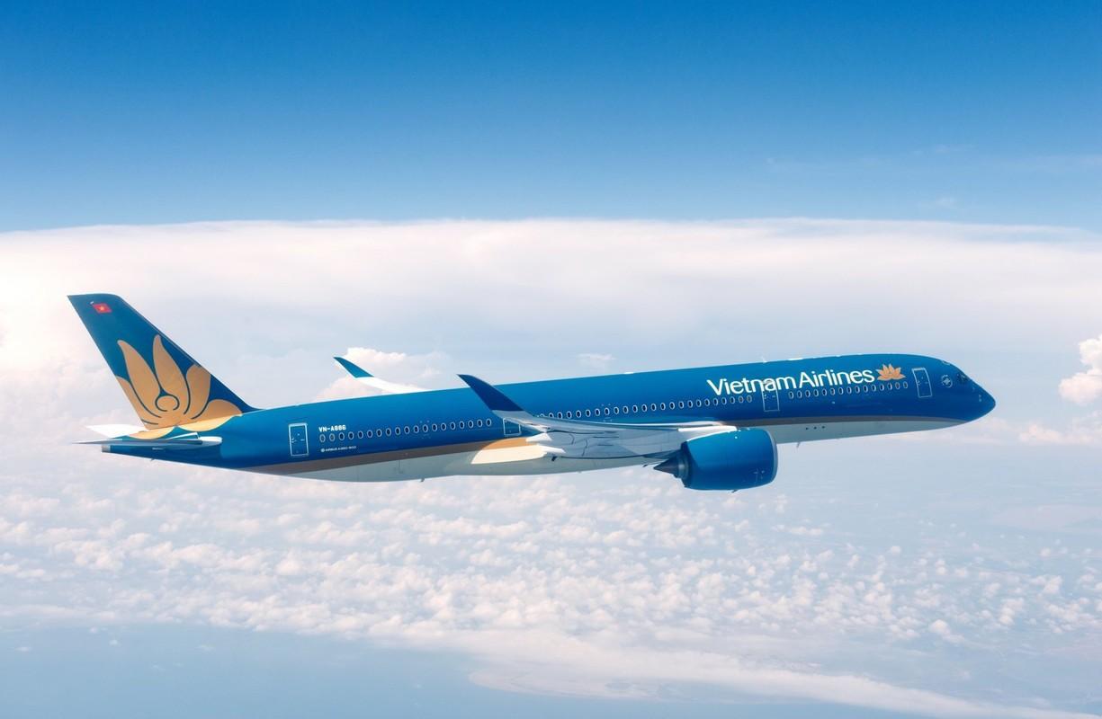 """Kham pha """"sieu may bay"""" Airbus A350 bi chim troi lam rach vo canh-Hinh-11"""