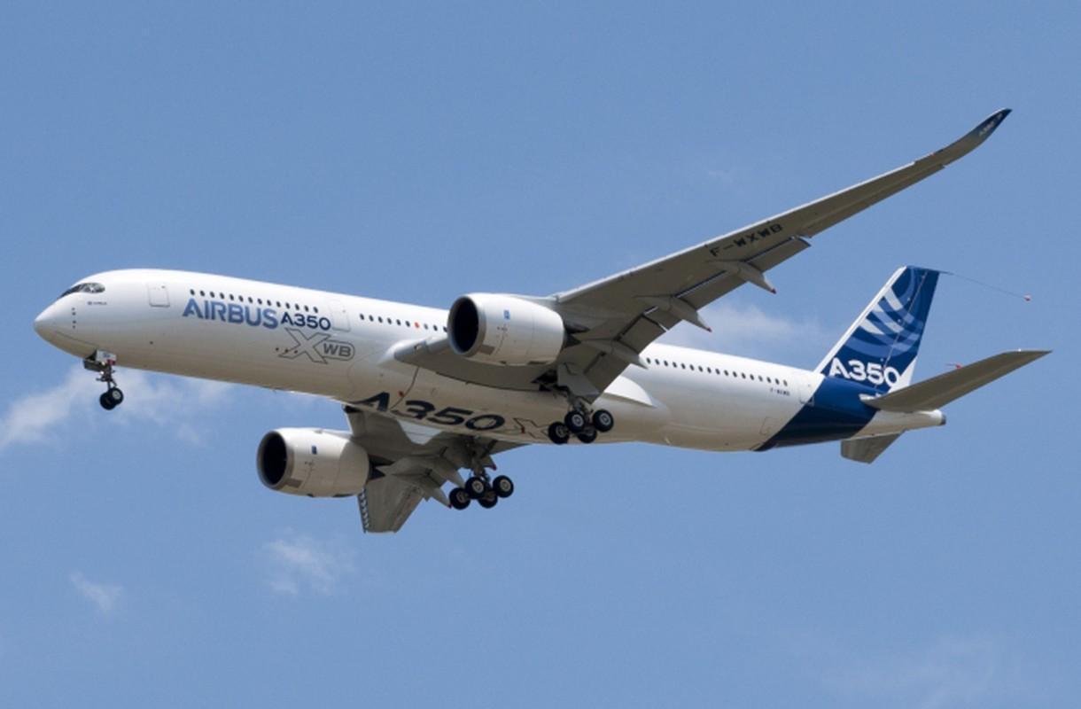 """Kham pha """"sieu may bay"""" Airbus A350 bi chim troi lam rach vo canh-Hinh-2"""