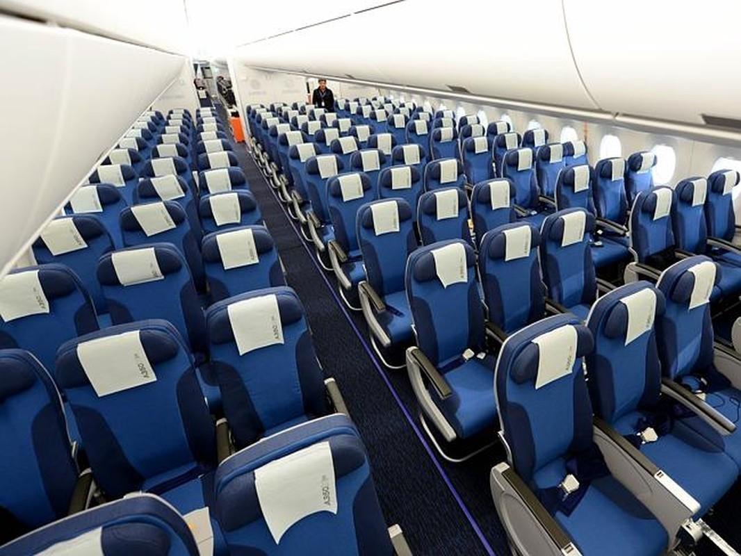 """Kham pha """"sieu may bay"""" Airbus A350 bi chim troi lam rach vo canh-Hinh-4"""