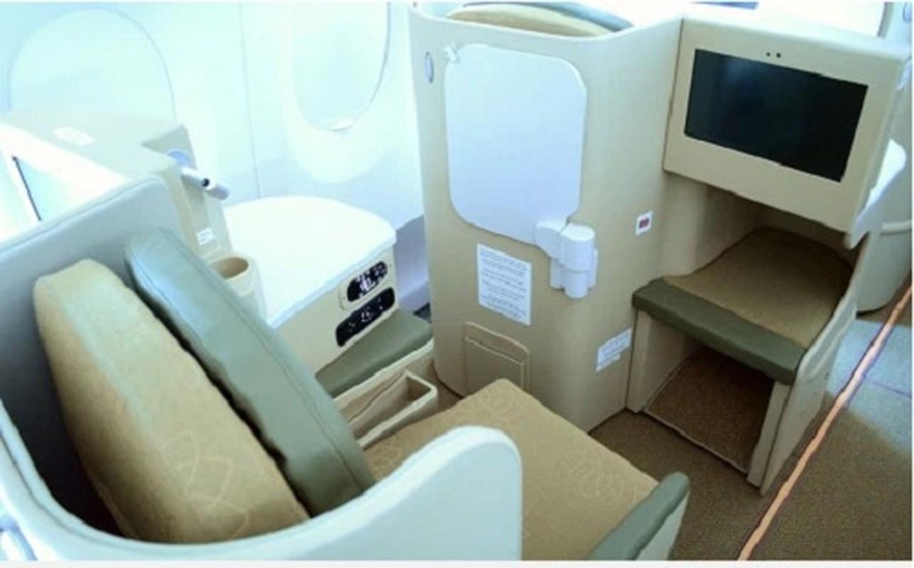 """Kham pha """"sieu may bay"""" Airbus A350 bi chim troi lam rach vo canh-Hinh-6"""