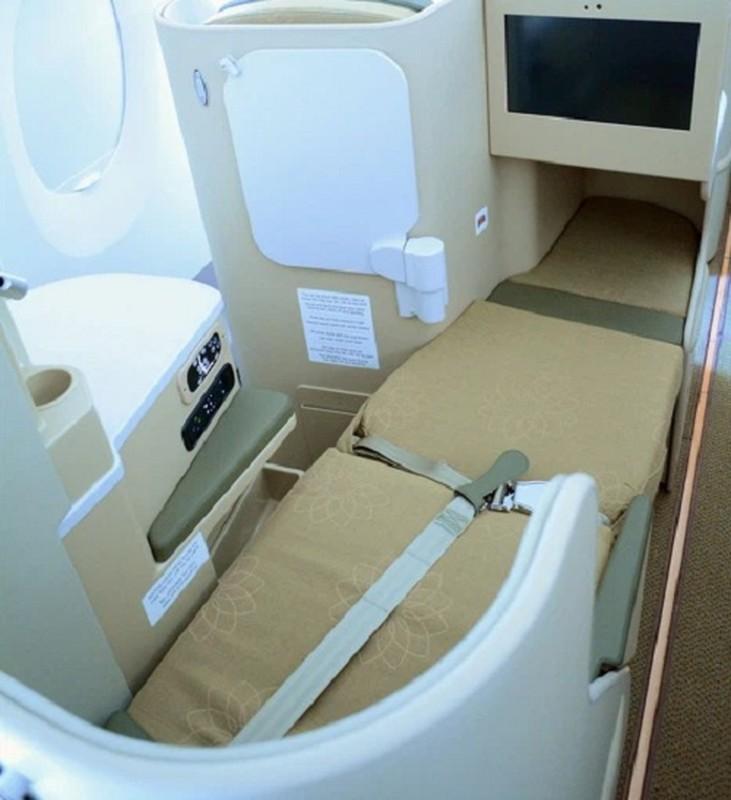 """Kham pha """"sieu may bay"""" Airbus A350 bi chim troi lam rach vo canh-Hinh-7"""
