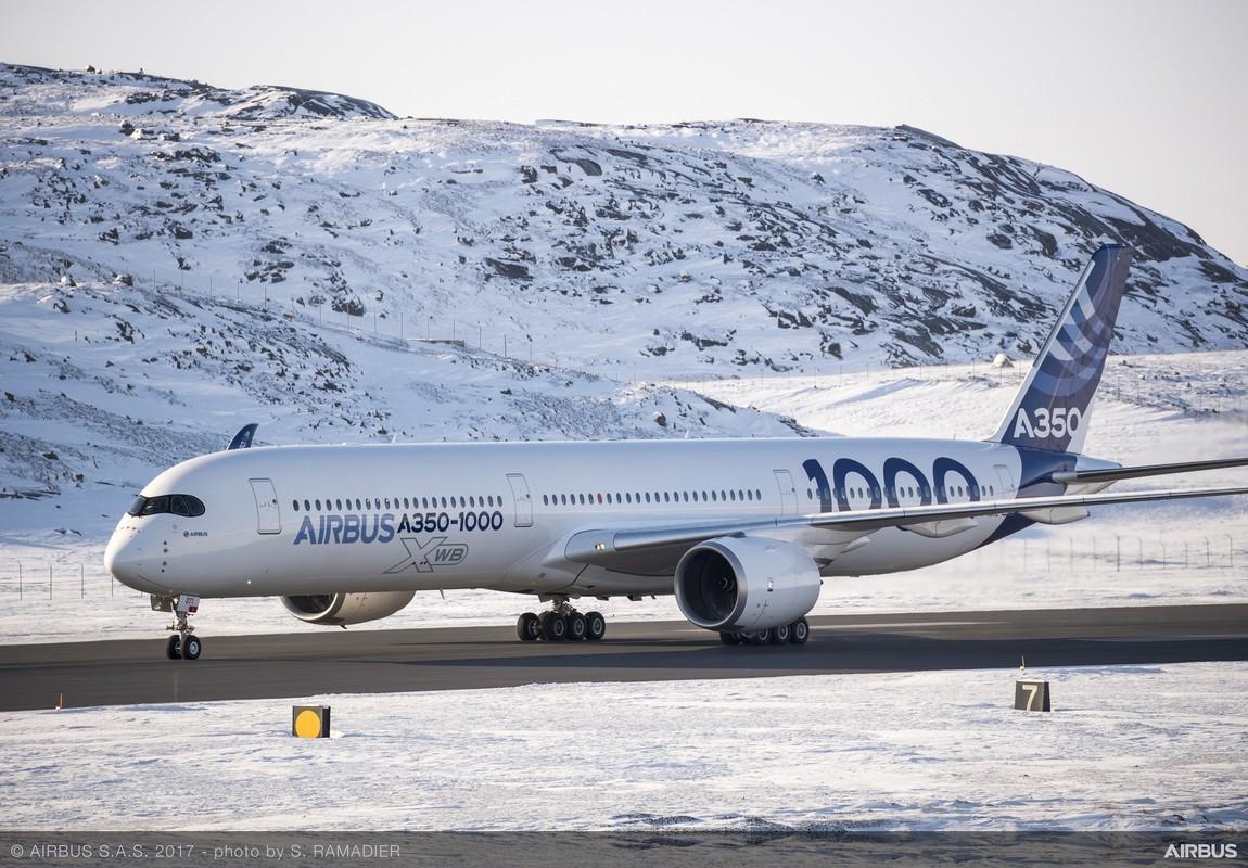 """Kham pha """"sieu may bay"""" Airbus A350 bi chim troi lam rach vo canh-Hinh-9"""